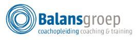 Balansgroep organisatiecoach